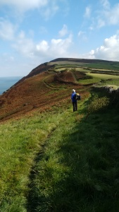 great hangman combe martin